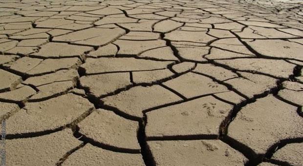 Mouvement de terrain sécheresse